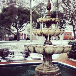 frozen fountain!