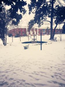 looking toward Memorial Hall; photo from Danica Newton '17