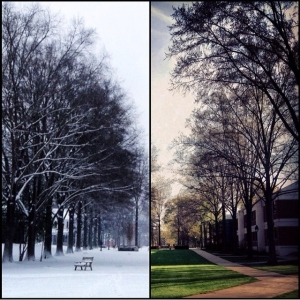 during and before the snow; photo by Sami Maree '14