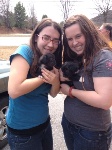 Several weekends ago, we went to Columbia and played with puppies!